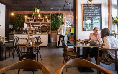 Restaurant and Cafe Website Design